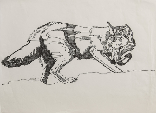 Large coyote ink