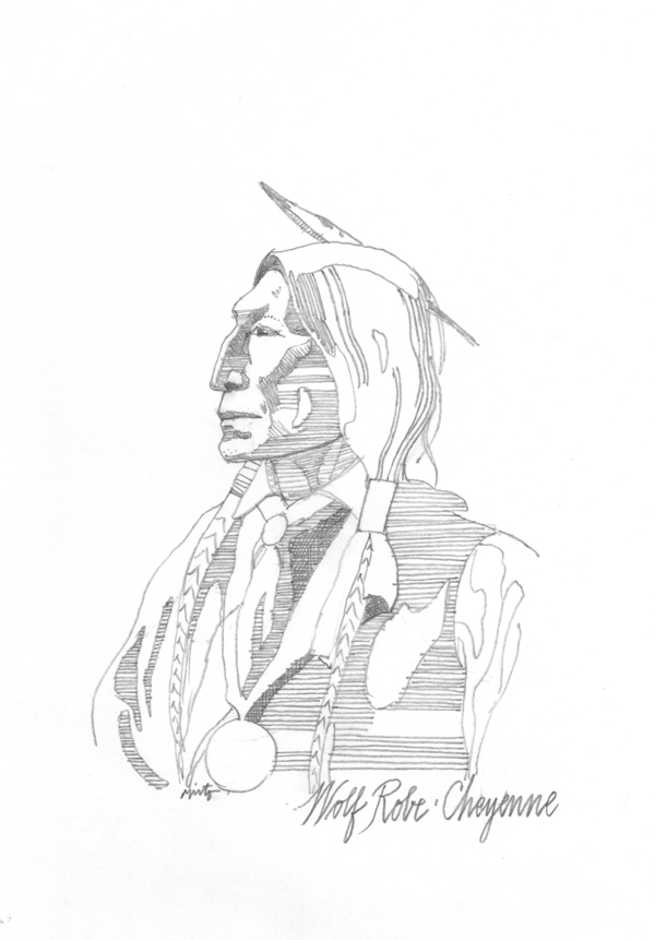 Large wolf robe cheyenne pencil