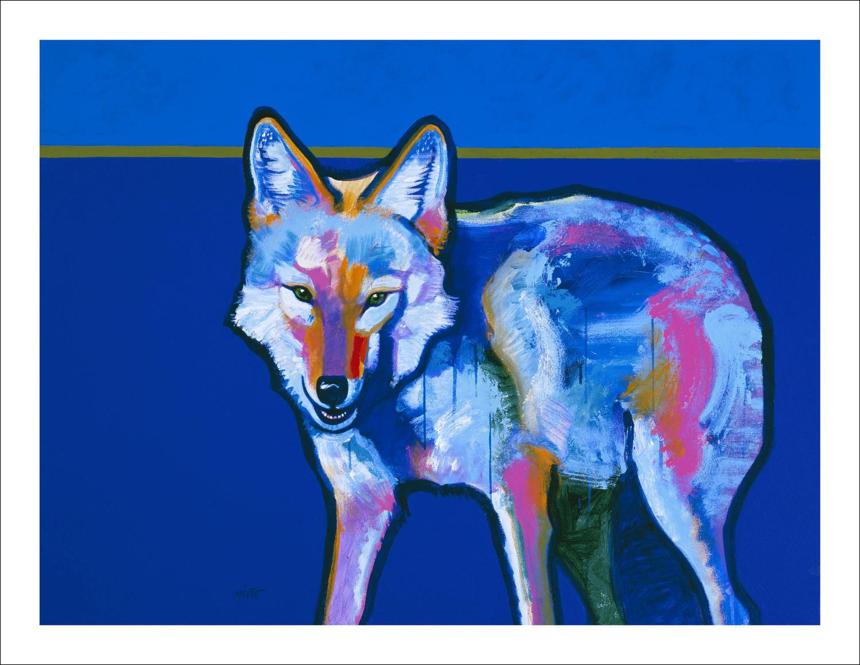 Xlarge bluecoyote 30x40 border