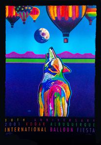 Medium balloon fiesta 2001