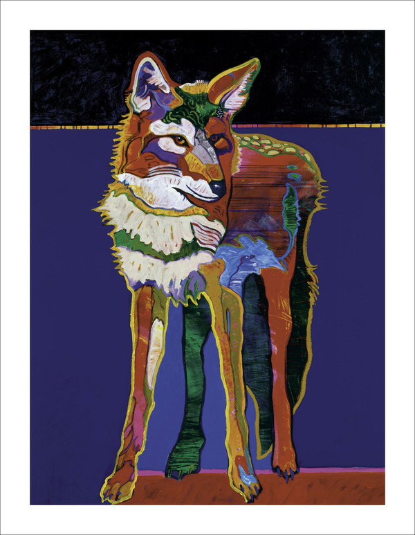 Large coyote selfportrait border