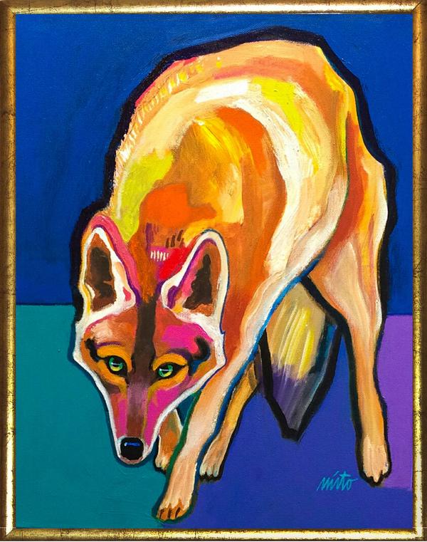 Large coyote framed
