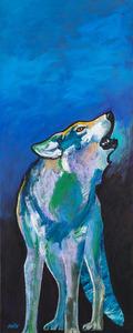 Medium alpha wolf calling 004